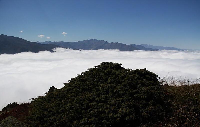 Huser Yaylası Bulut Denizi Çamlıhemşin-Rize