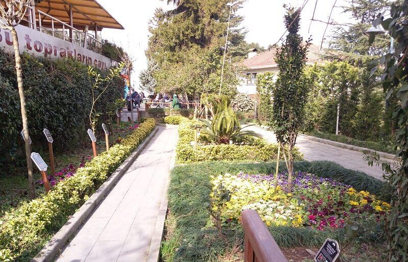 Ziraat Çay Bahçesi